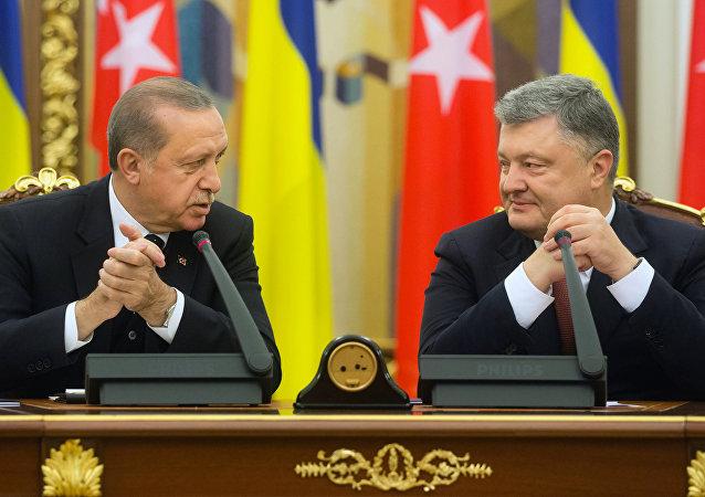 La visita de Erdogan a Kiev