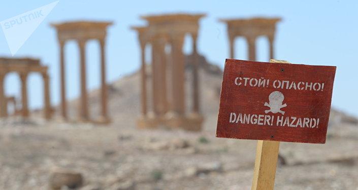 Campo de minas en Palmira