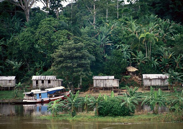 Amazonía (imagen referencial)
