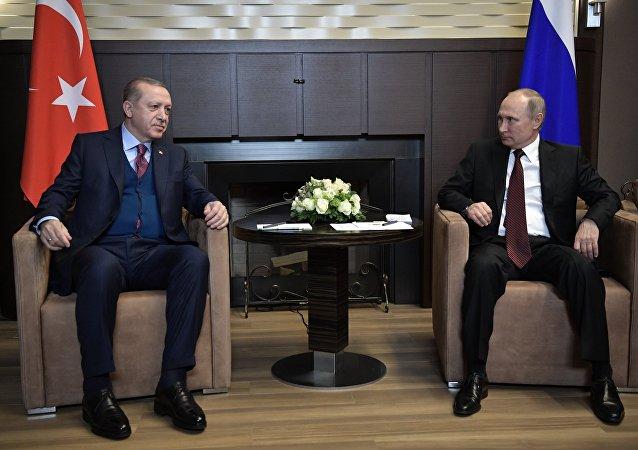 El presidente de Rusia, Vladímir Putin, y el líder turco, Recep Tayyip Erdogan