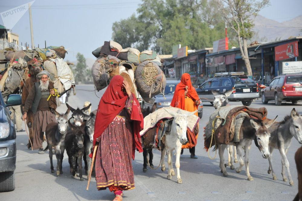 Nómadas en la carretera Kabul-Jalalabad