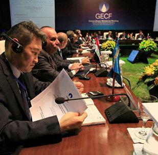 Ministros de países productores de gas