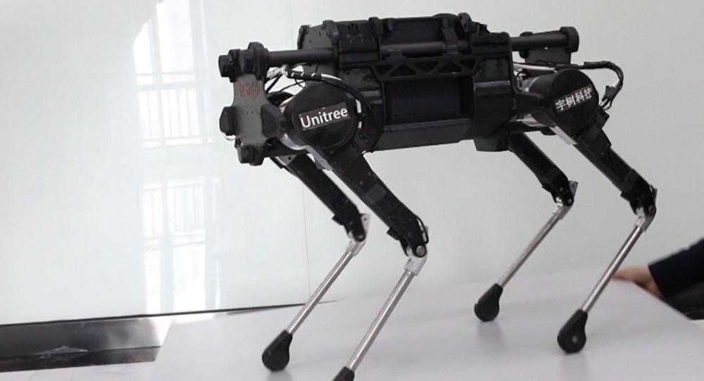 El can robótico LaikaGo