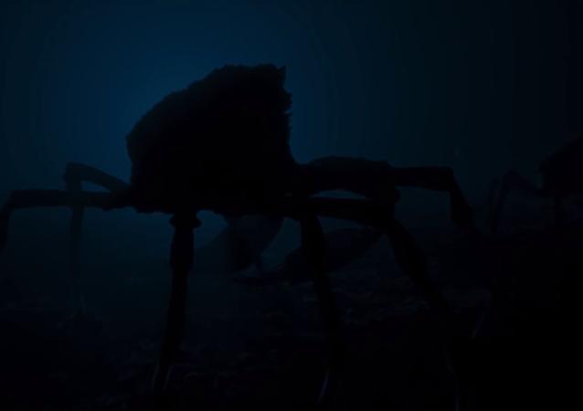 Logran captar al ejército más mortífero de los océanos