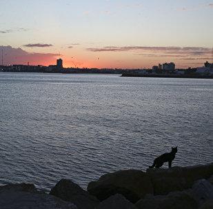 En la base naval Mar del Plata tras la desapación del submarino argentino ARA San Juan