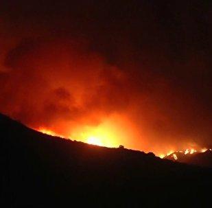 Peligro extremo: grandes incendios forestales asolan California