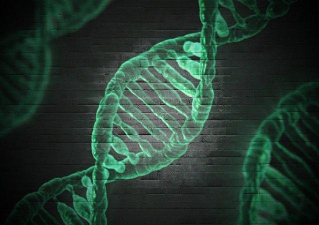 Modelo del ADN (imagen referencial)
