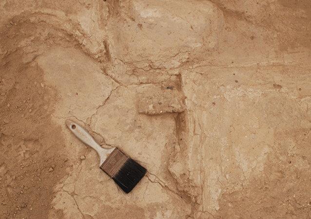 Excavación arqueológica (imagen referencial)