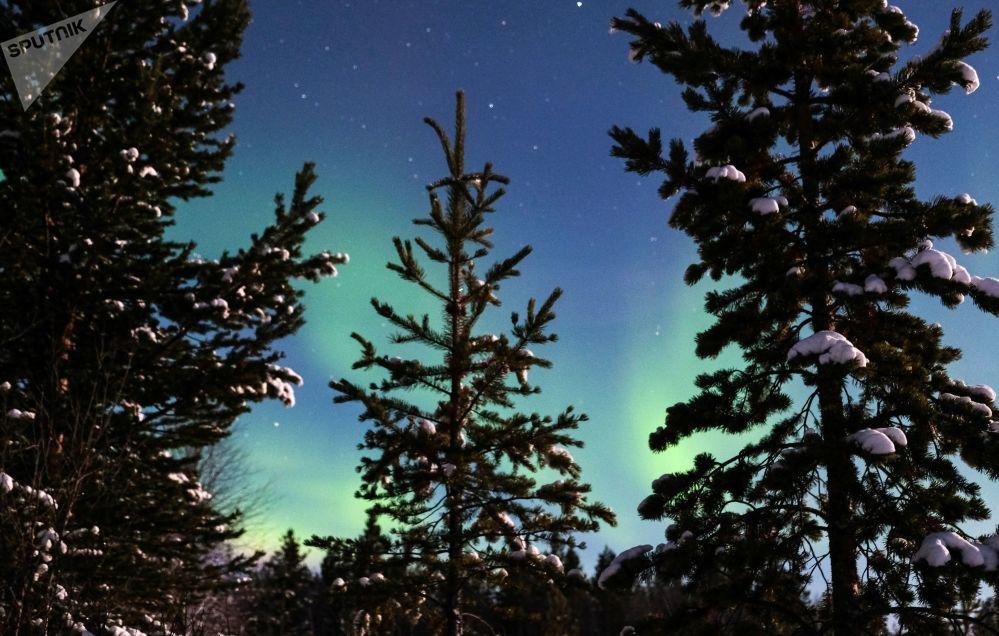 La hipnótica danza de la aurora boreal en el Ártico ruso