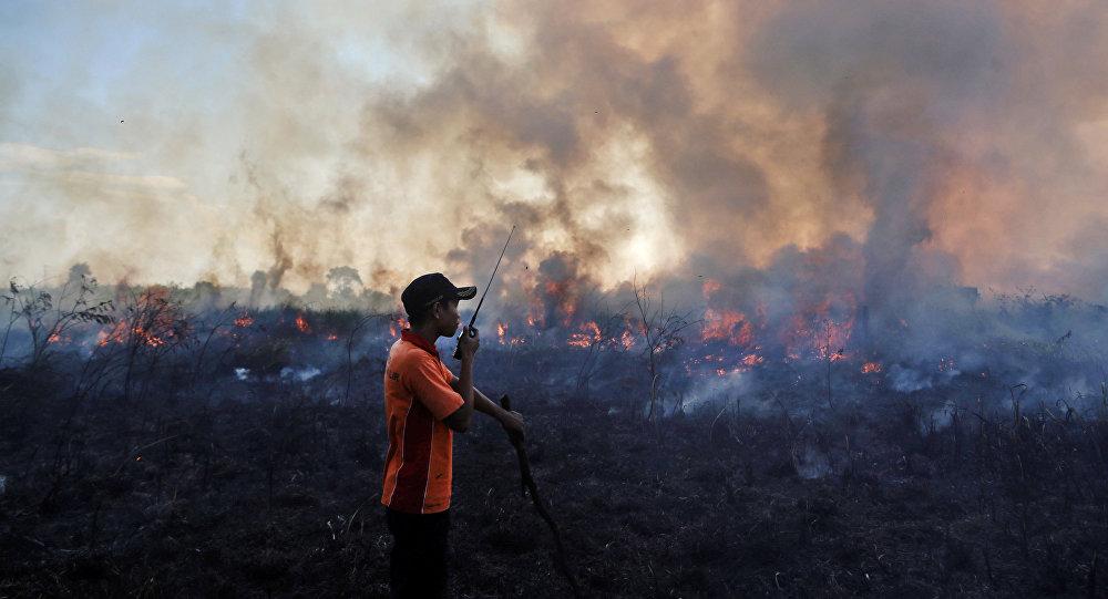 Consecuencias de incendios forestales en Indonesia