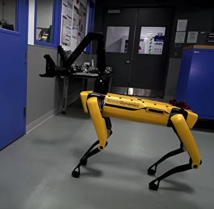 Boston Dynamics pone al límite a sus robots