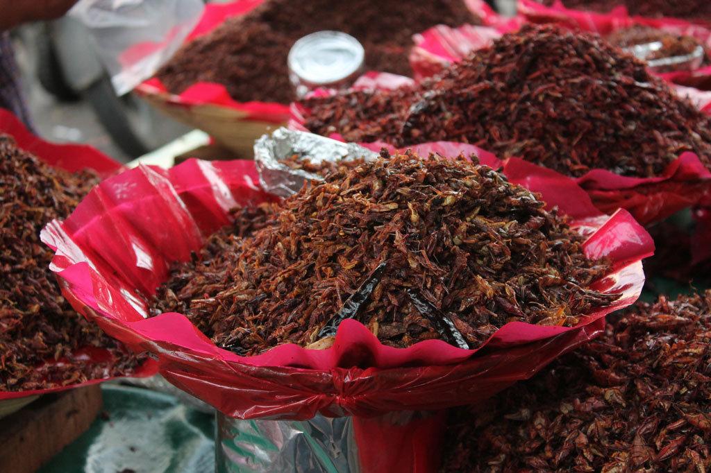 Se muestra un acercamiento a un montón de chapulines cocinados y en venta en un puesto afuera del mercado en el centro de Oaxaca.