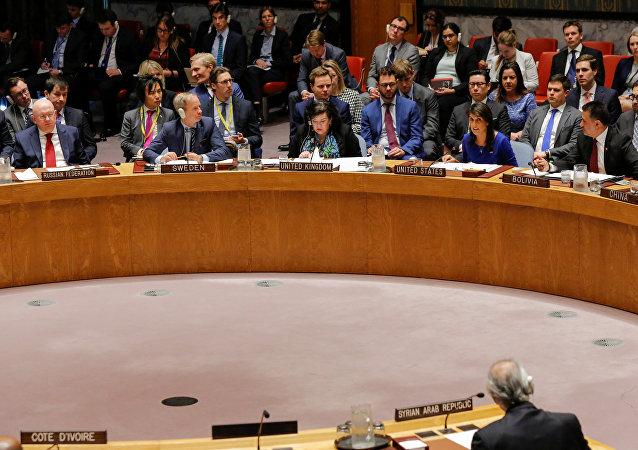 El Consejo de Seguridad de la ONU