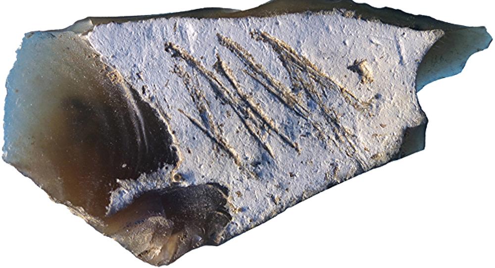 Instrumento neandertal encontrado en la cueva de Kiik-Koba en Crimea