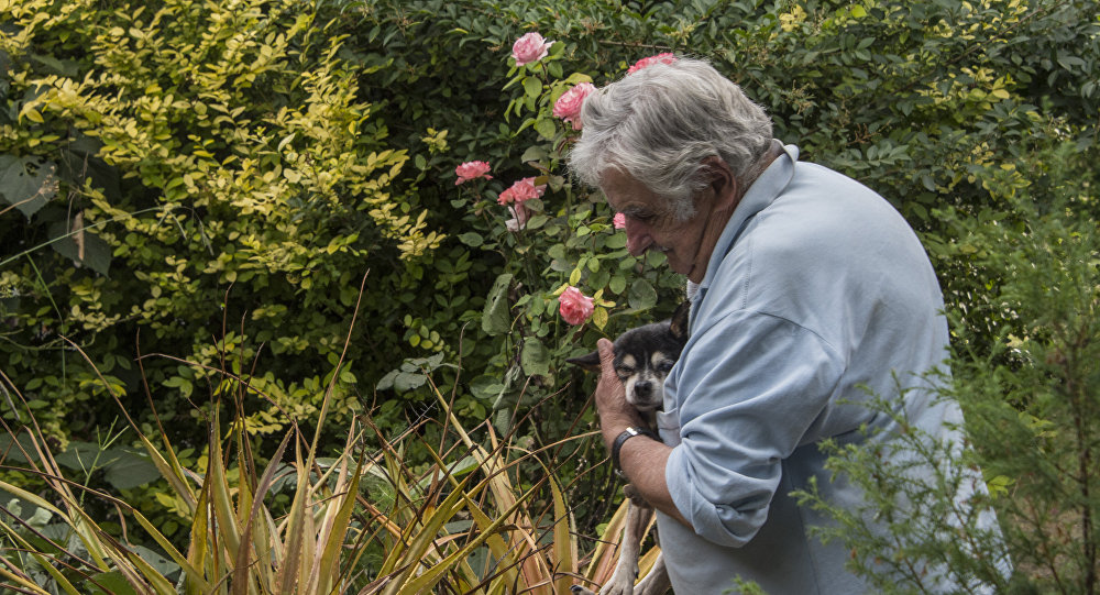 El expresidente de Uruguay, José Mujica, junto a su perra Manuela, en 2016