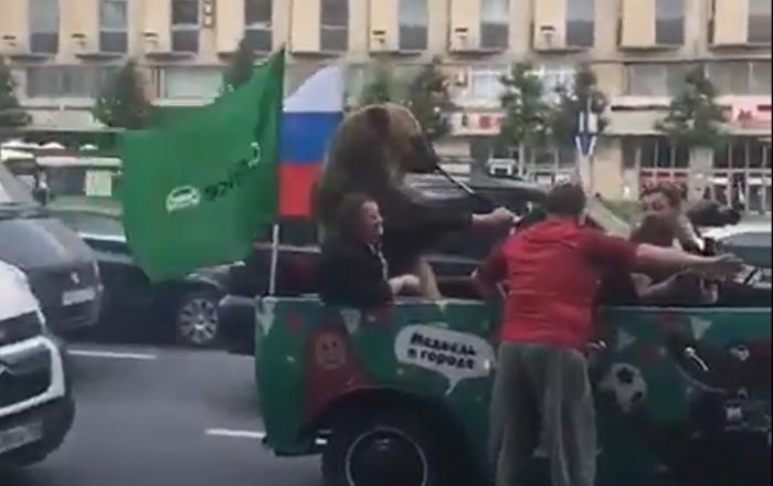Los osos sí que pasean por las calles de Moscú… y además les gusta el fútbol
