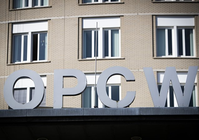 La sede de la OPAQ (archivo)