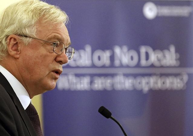 David Davis, secretario del Gobierno del Reino Unido para la Salida de la Unión Europea