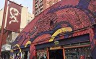 Barrio Chino de Buenos Aires, Argentina