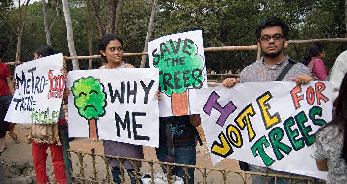 Los activistas defendiendo la deforestación
