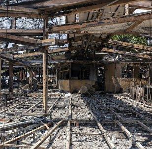 Consecuencias del incendio forestal en Grecia