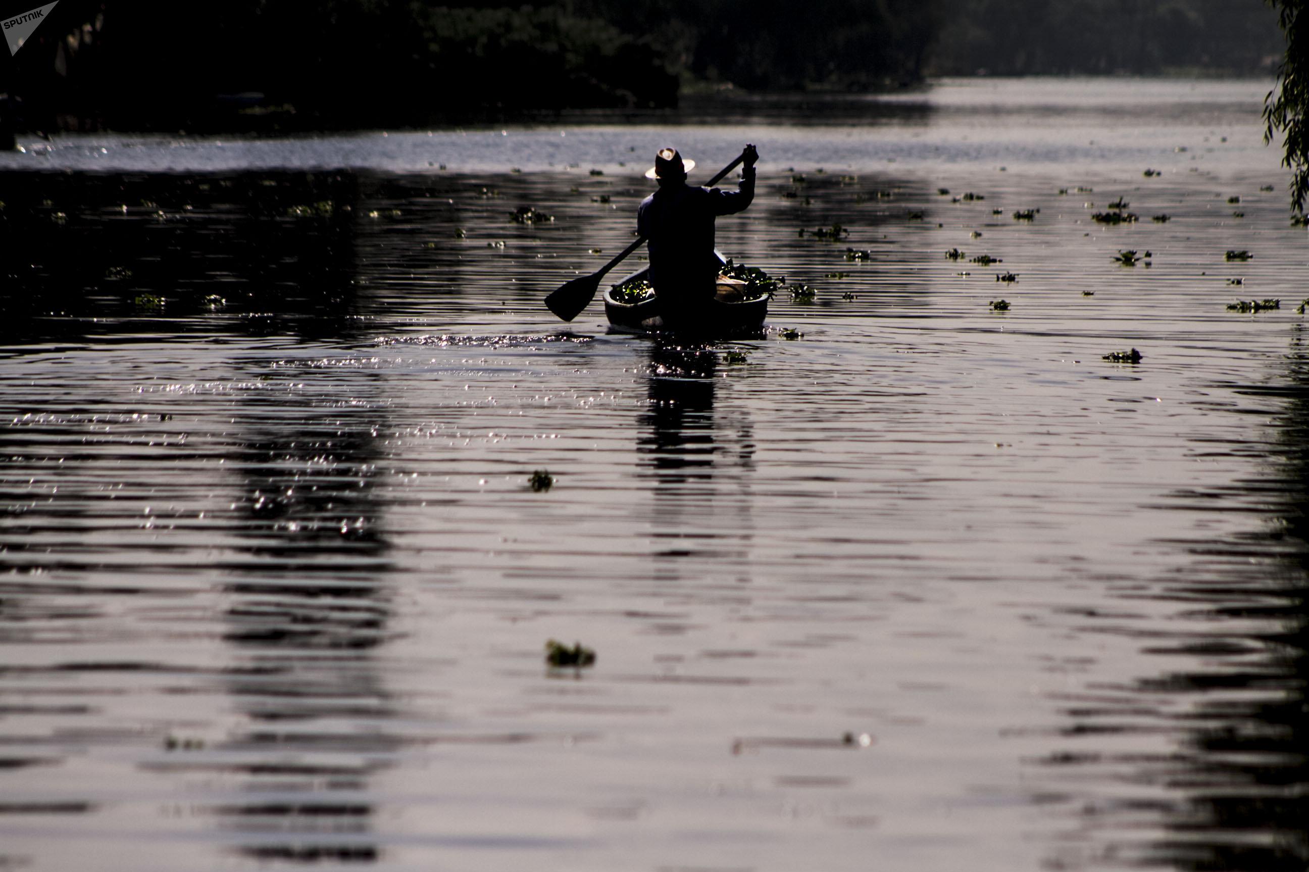 Campesino de Xochimilco rema en el último lago del Valle de México