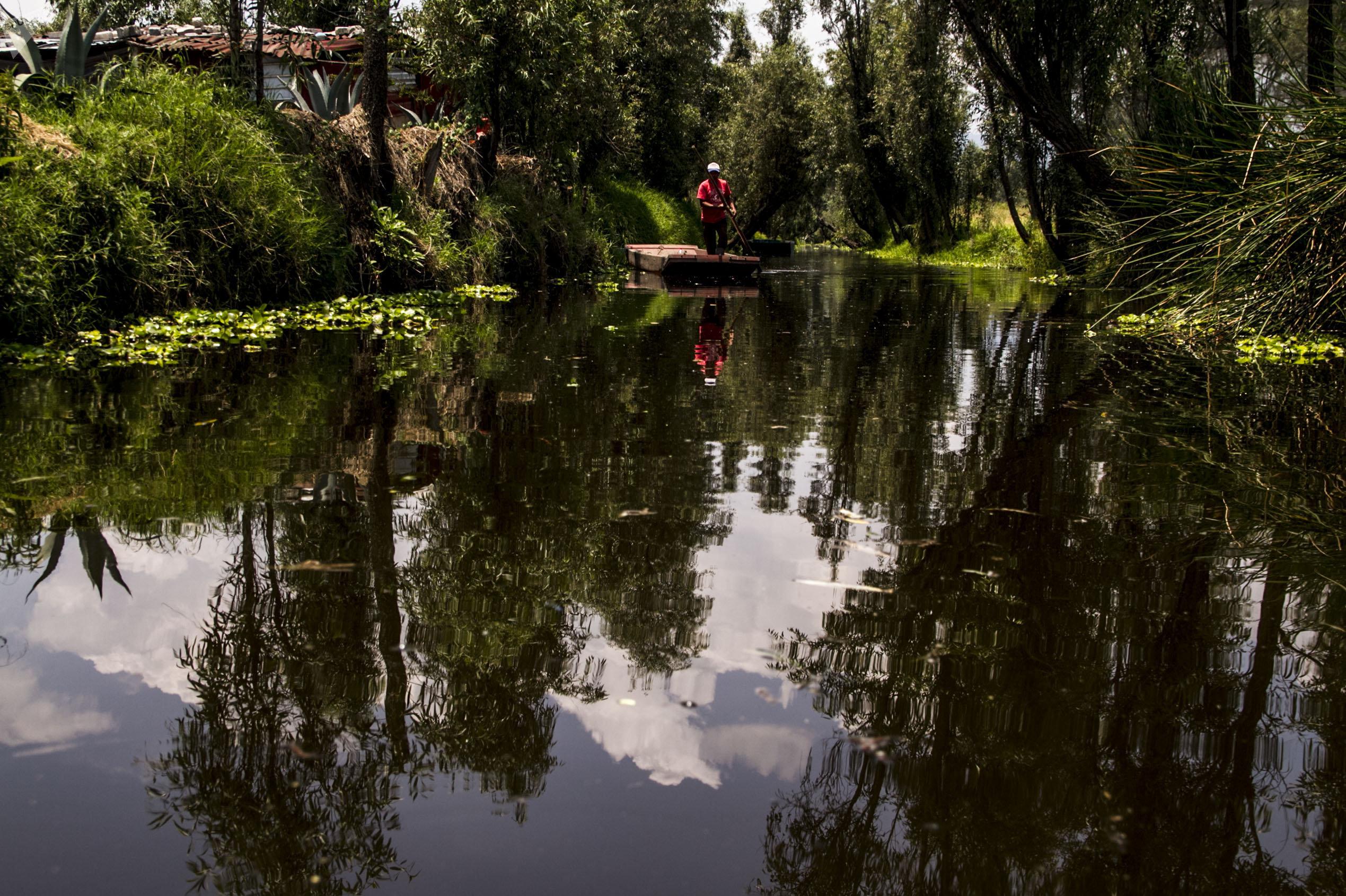 Campesino en el canal de Xochimilco el último lago de la Ciudad de México