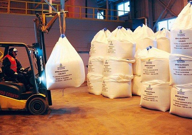 Proceso final de la producción de fertilizantes en una fábrica de PhosAgro
