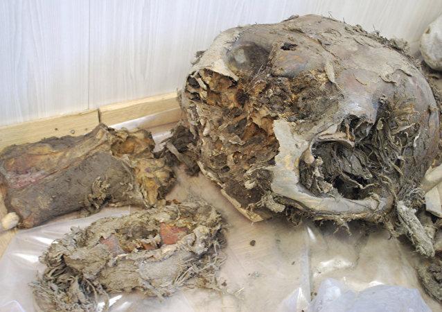 Los restos de un mamut