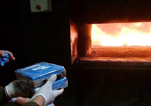 Queman casi 400 kilos de cocaína encontrada en la Embajada de Rusia en Argentina