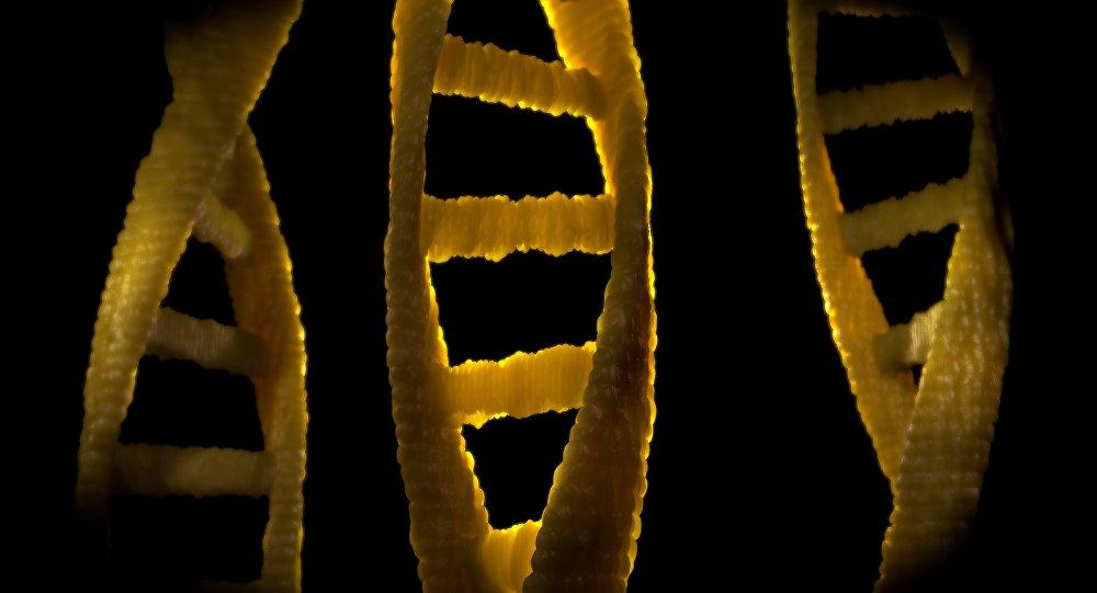 El ADN (imagen referencial)