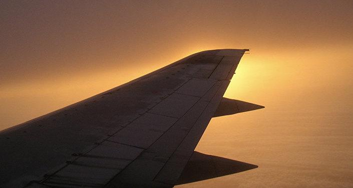 El avión (Archivo)