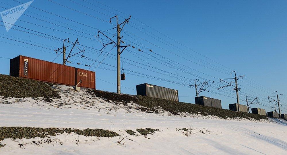 Un tren de carga sigue una de las ramas del ferrocarril Transiberiano cerca de Novosibirsk