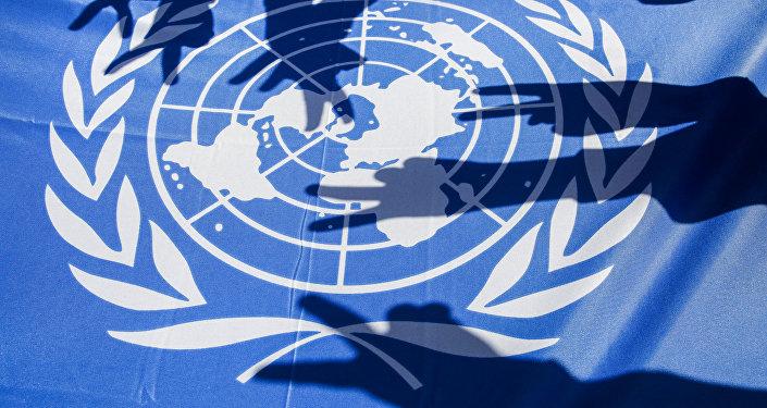 Bandera de la ONU