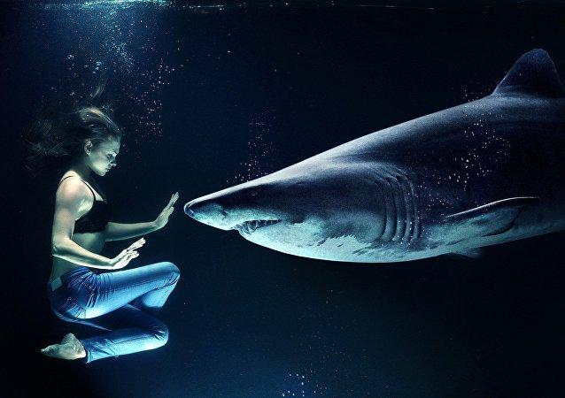 Una mujer y un tiburón