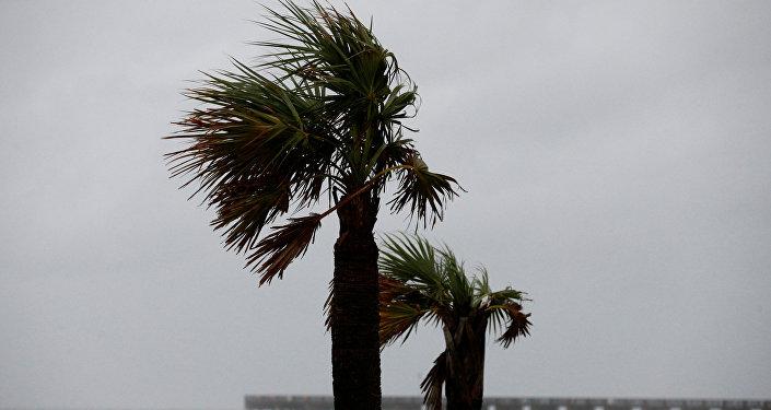 La llegada del huracán Michael