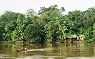 La selva amazónica