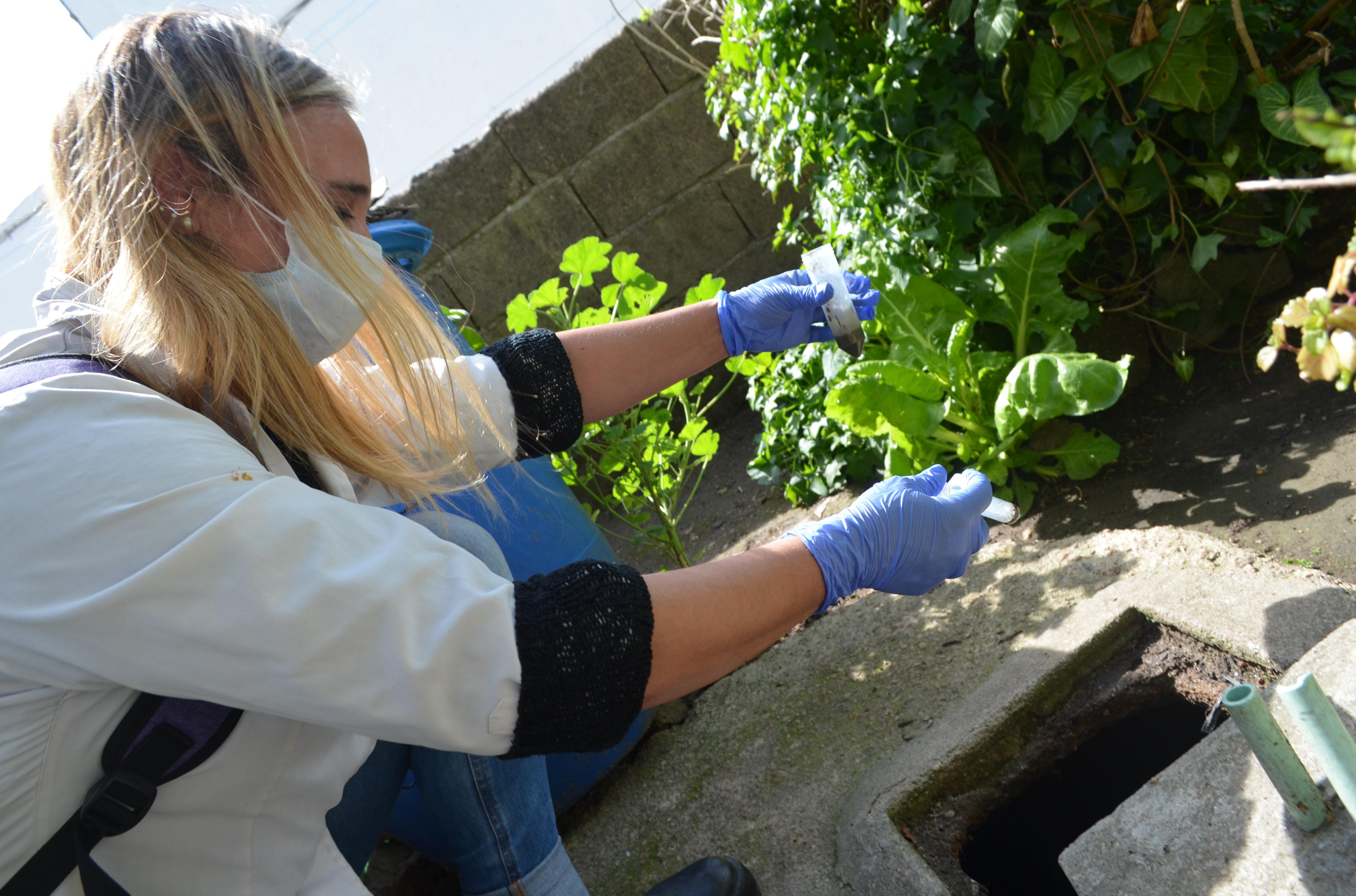 Maestra integrante del proyecto Entre bichitos echando los Microorganismos Eficientes Nativos en una cámara séptica