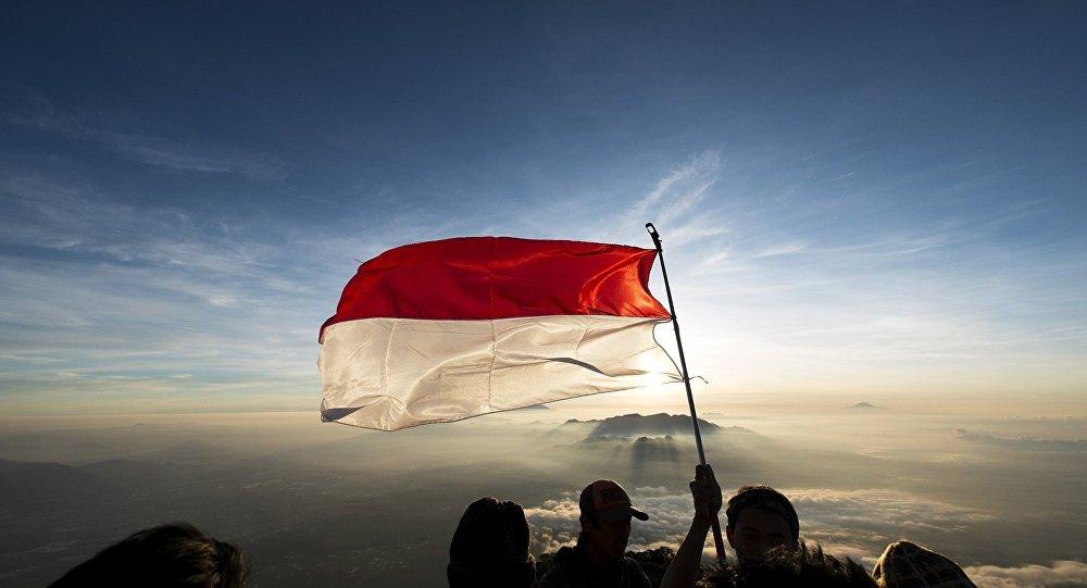 Bandera de Mónaco (imagen referencial)