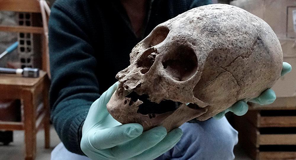 El arqueólogo Jedu Sagarnaga sostiene un cráneo como parte de un hallazgo arqueológico, en Mazo Cruz