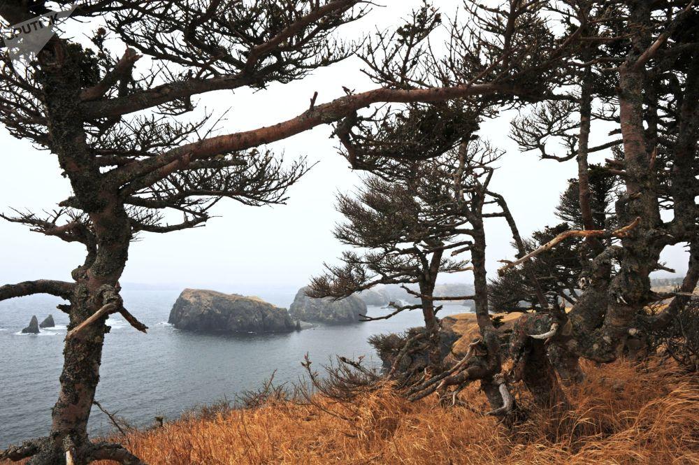 Así es una de las islas que Japón trata de arrebatar a Rusia