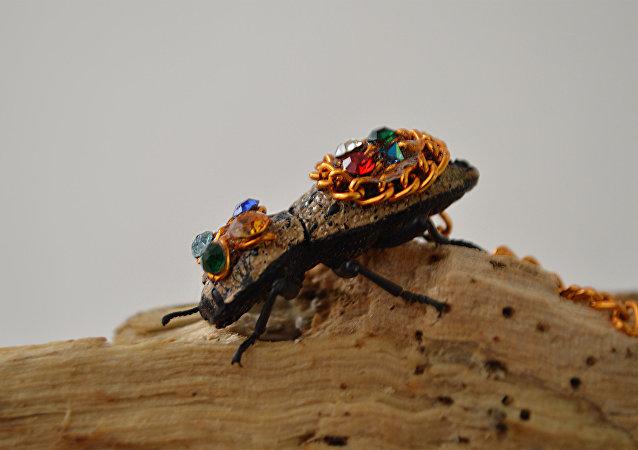 El maquech o escarabajo maya