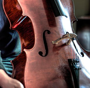 Un violonchelo, imágen referencial