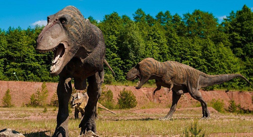 Dinosaurios (ilustración gráfica)