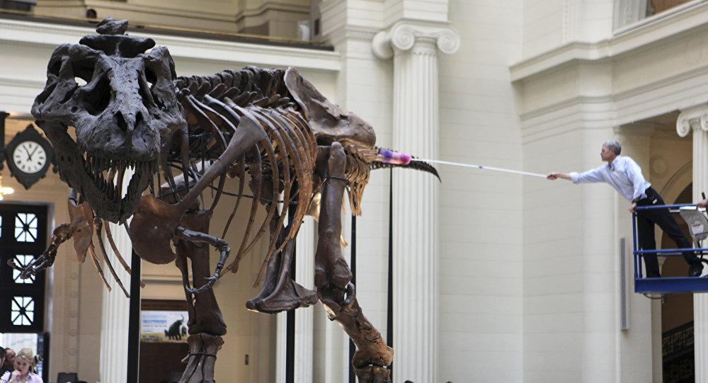 El titanosauro Tyrannosaurus rex, referencial