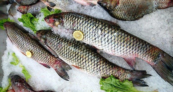 Un mercado de pescado, referencial