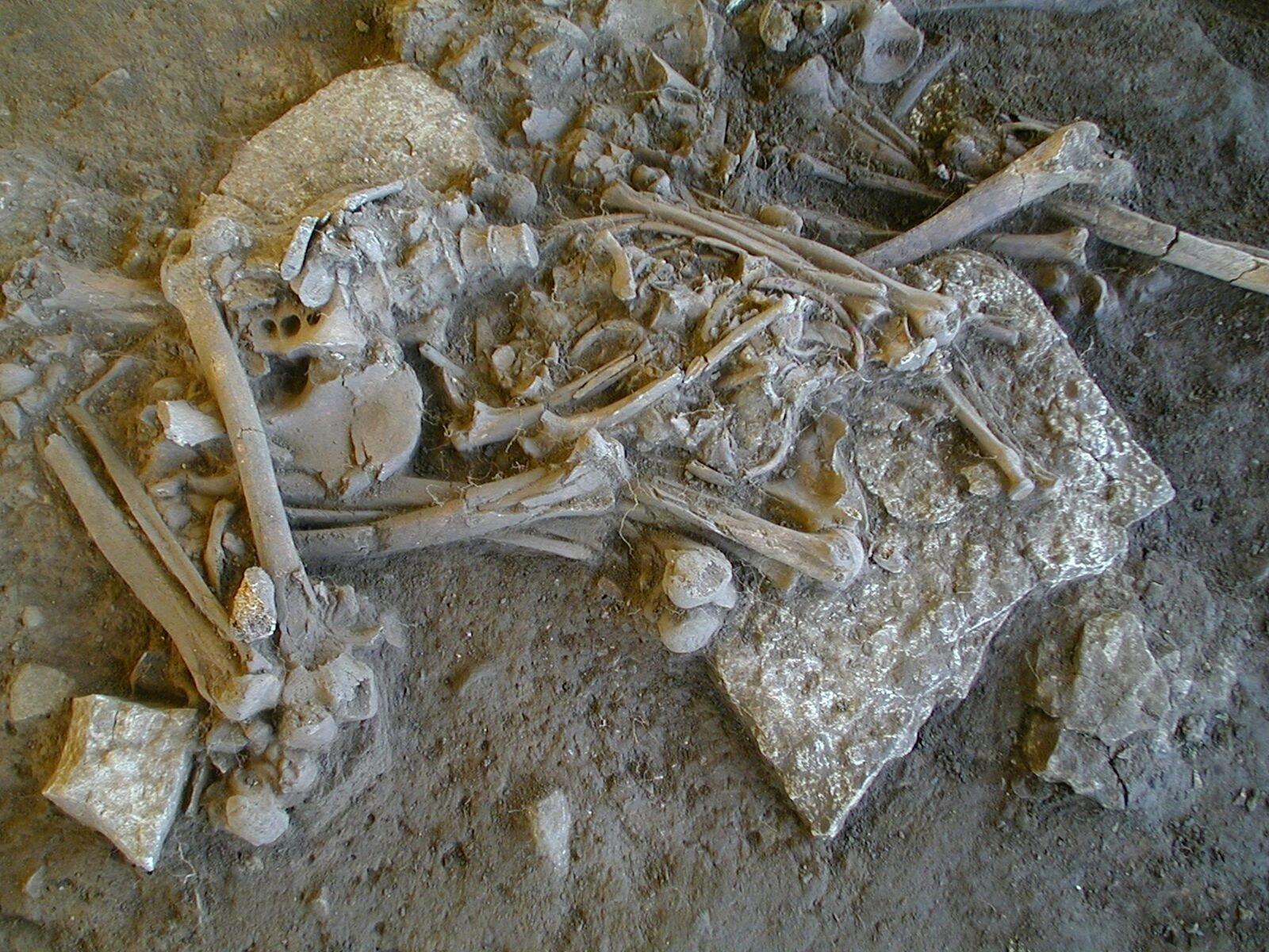 Restos de campesina donde se encontró una cepa de la bacteria Yersinia pestis