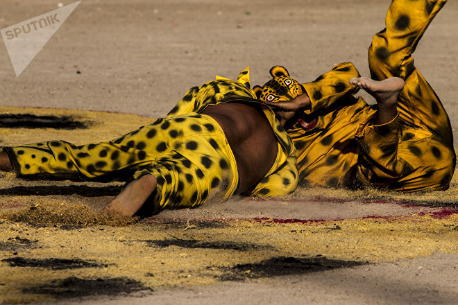 El tigre de Tequicorral pasó a la final del porrazo