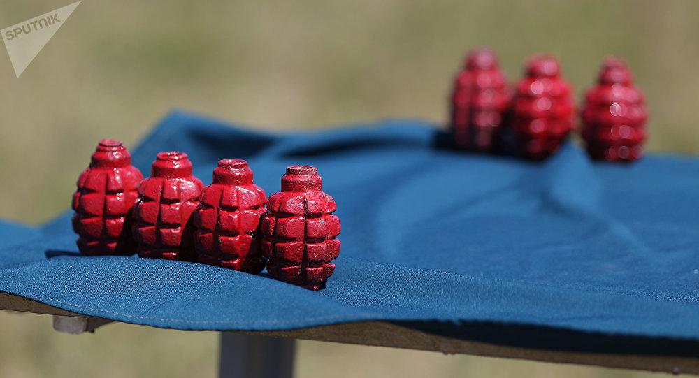 Unas granadas (imagen referencial)