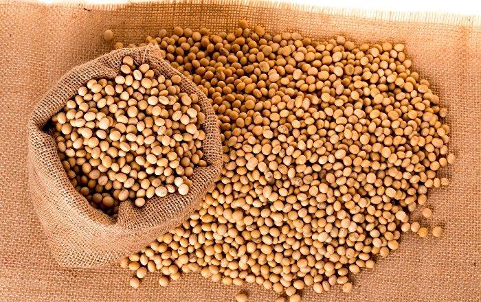 Bloqueos y paro cívico en Bolivia agravan un conflicto por el precio de soja